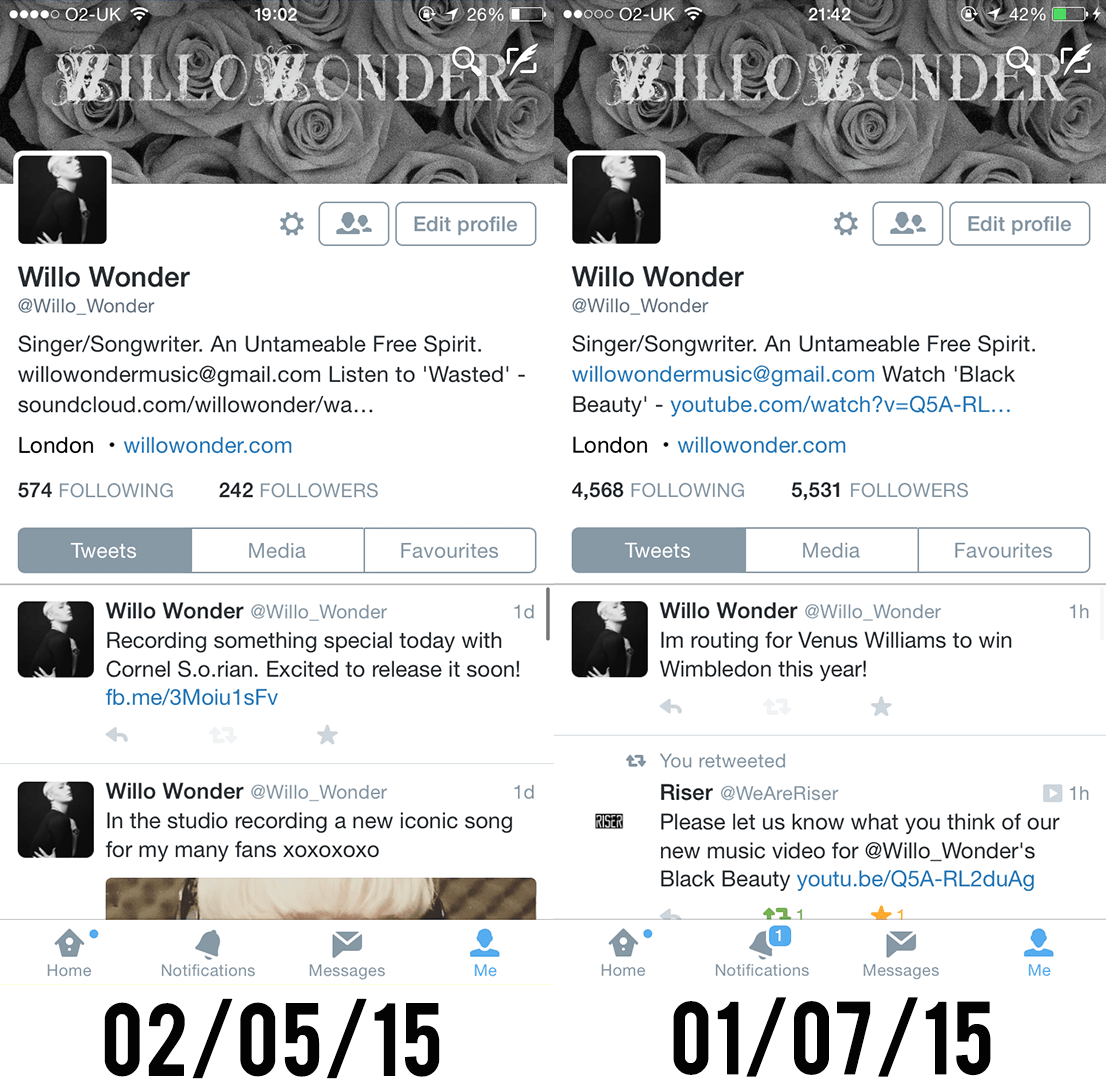 Willo Wonder Twitter | Social Media Management | Get Followers